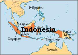 The Raid - Indonesia