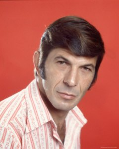 I am Spock, and these are Spock's sideburns.