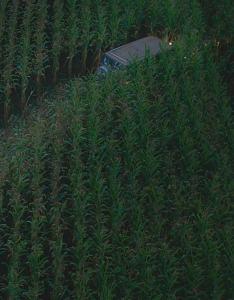 green-room-van-cornfield