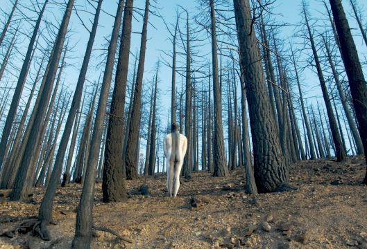 10_ArtbyJean-PaulBourdier1_California_PhotoVelcrowRipper