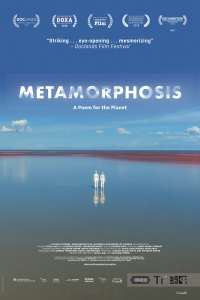 metamorphosis-one